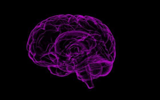 Jak taniec wpływa na Twój mózg?